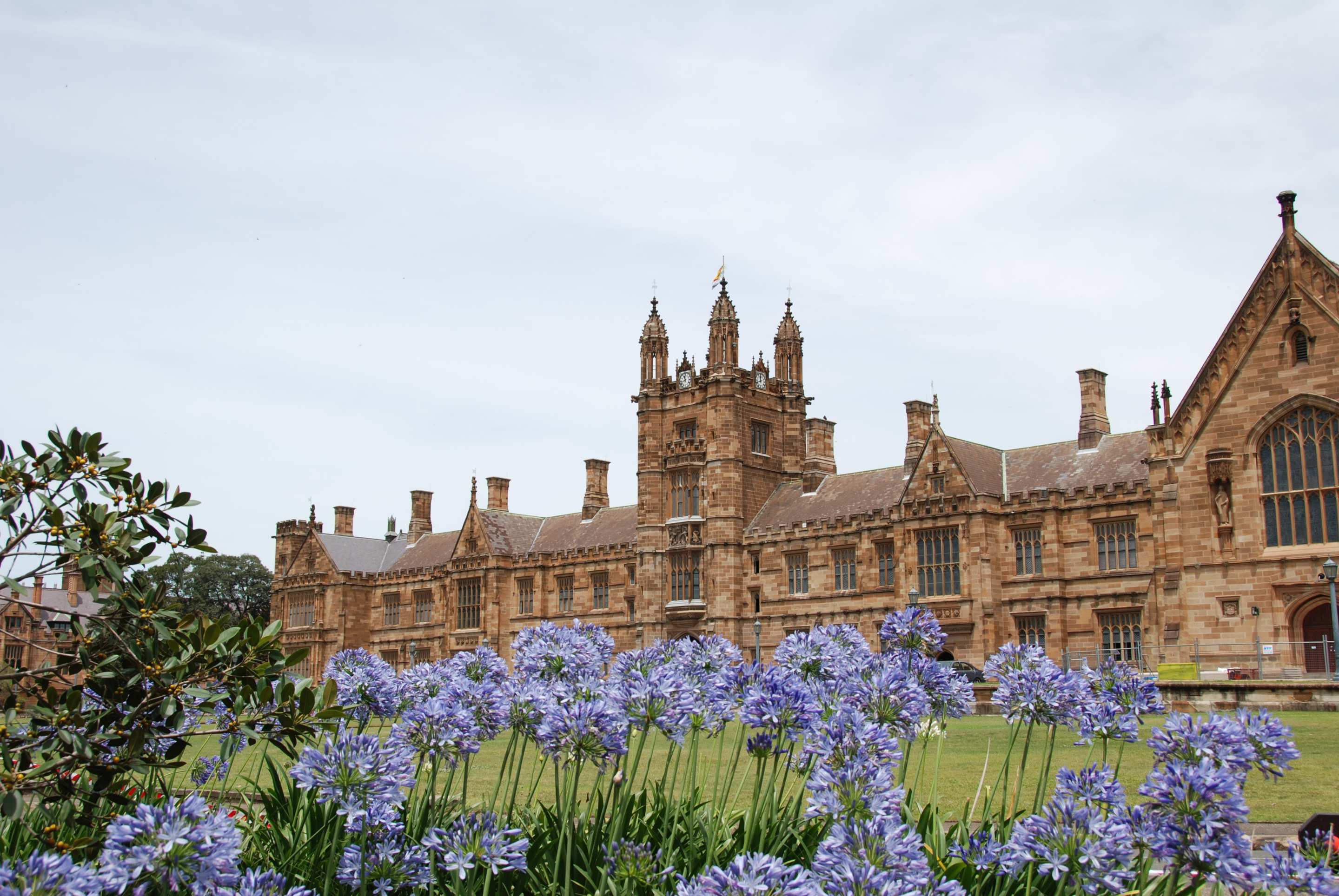 daftar jurusan kuliah di the university of sydney australia