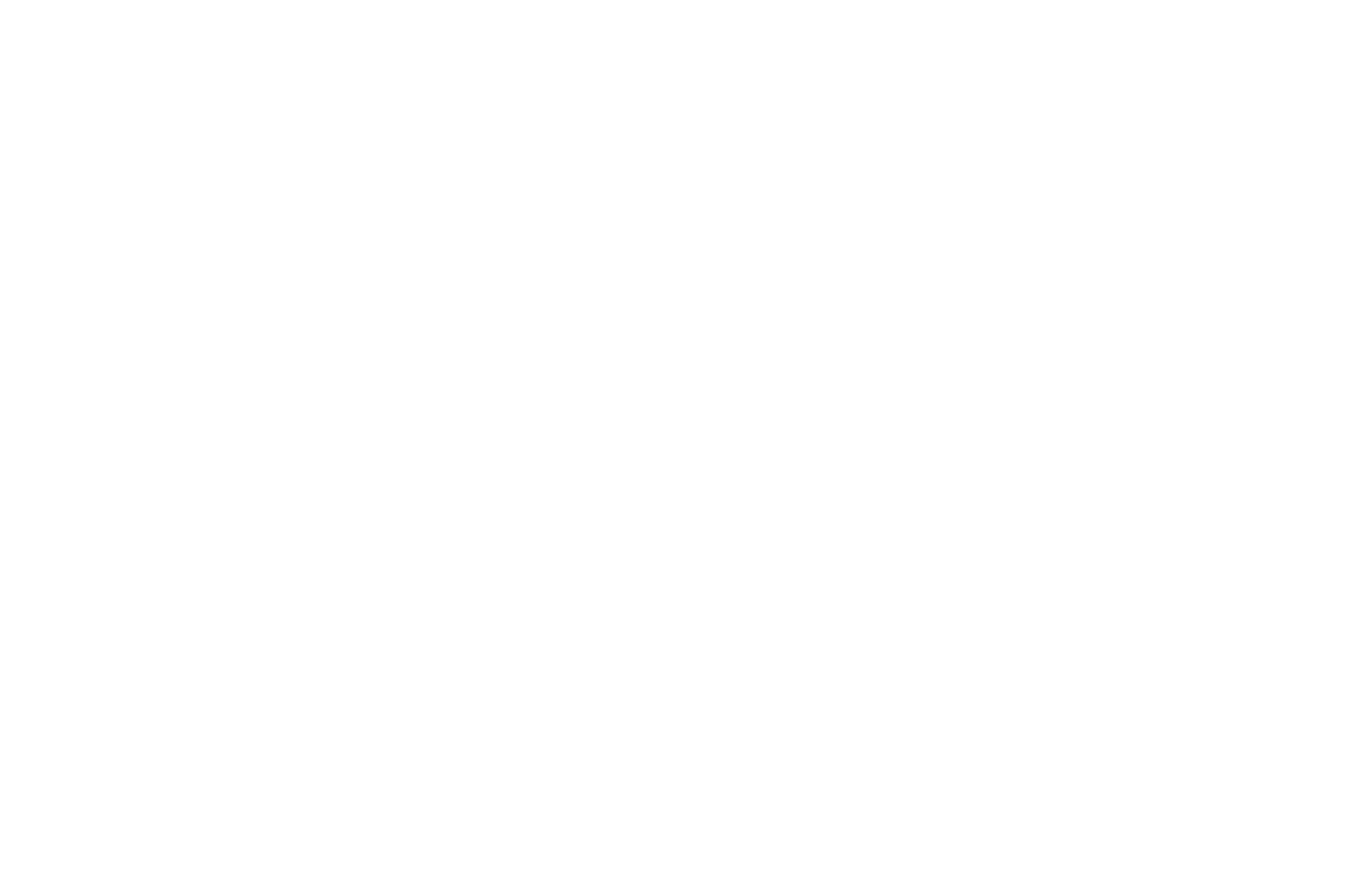 Logo ICAN with PT complete white 01 1